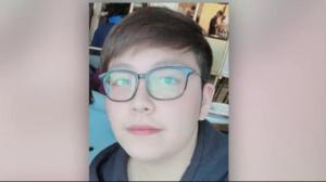 Ontario police search for kidnapped Chinese national